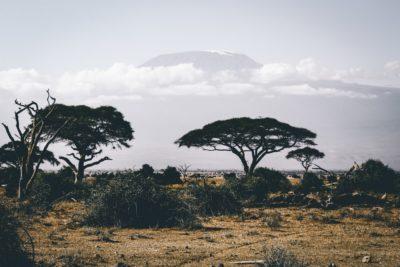 Mednarodno: GAIN – Kenya 2019